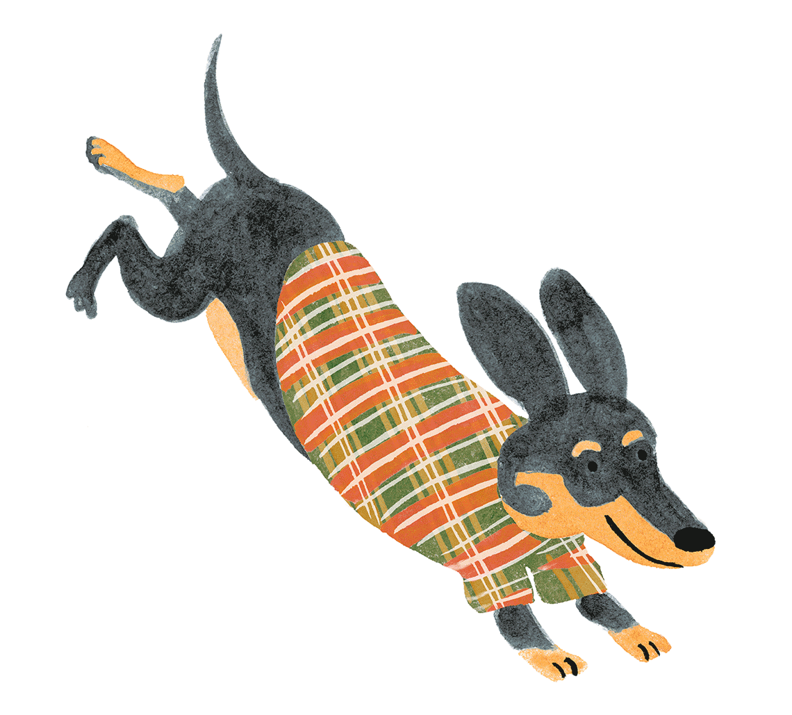 barkers_dachshund1140px