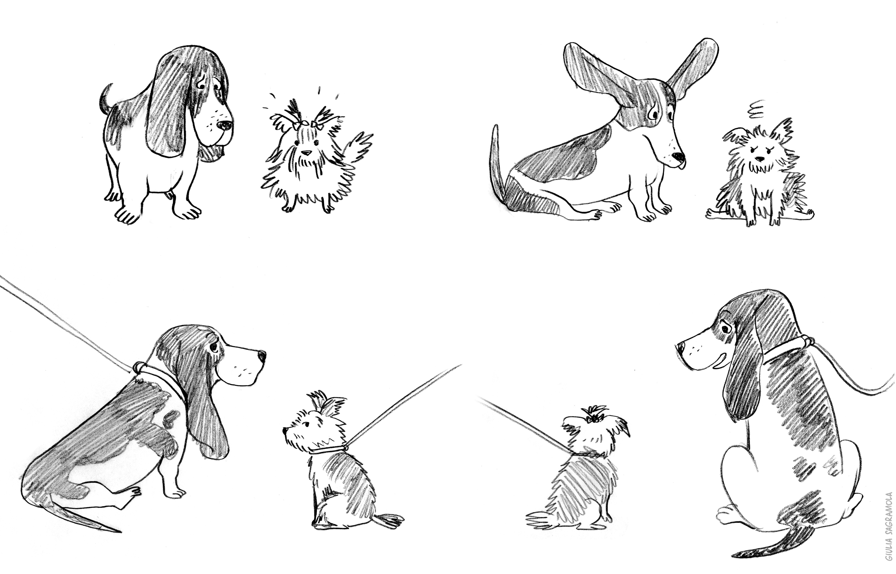barkers_sketches_for_website02