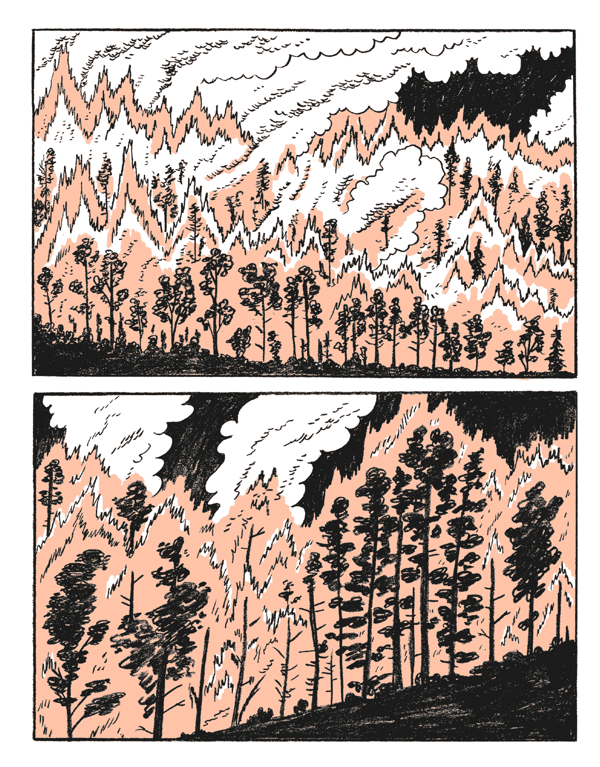 incendi-estivi-29