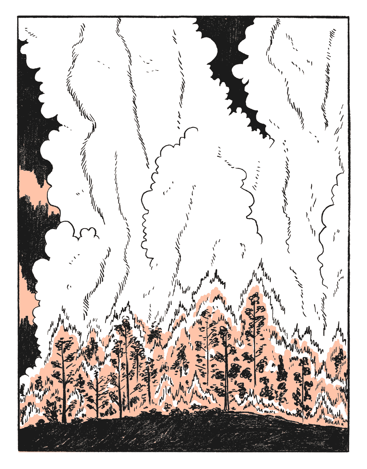 incendi-estivi-44