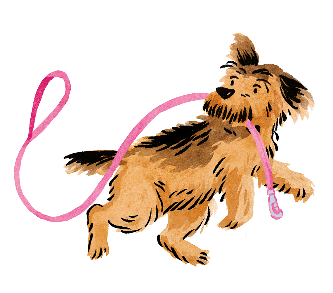 barkers_terrier1140px