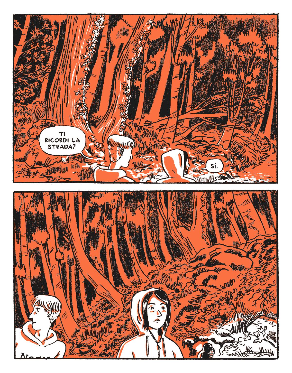 incendi-estivi-74